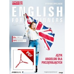 English Matters For Beginners Wersja elektroniczna