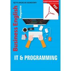 IT & Programming